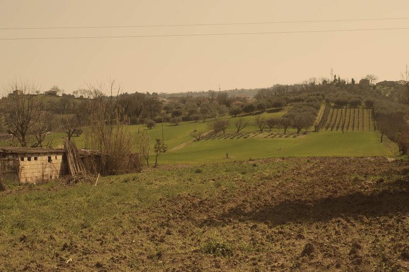 paesaggio rurale di corinne