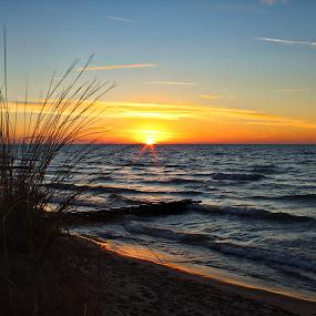 First Street Sunset and Dune Grass by Jennifer Smusz - Landscapes Sunsets & Sunrises ( #michigan #st.joseph #sunset #lake #dune #grass #beach #reflection #peaceful #serenity #view )