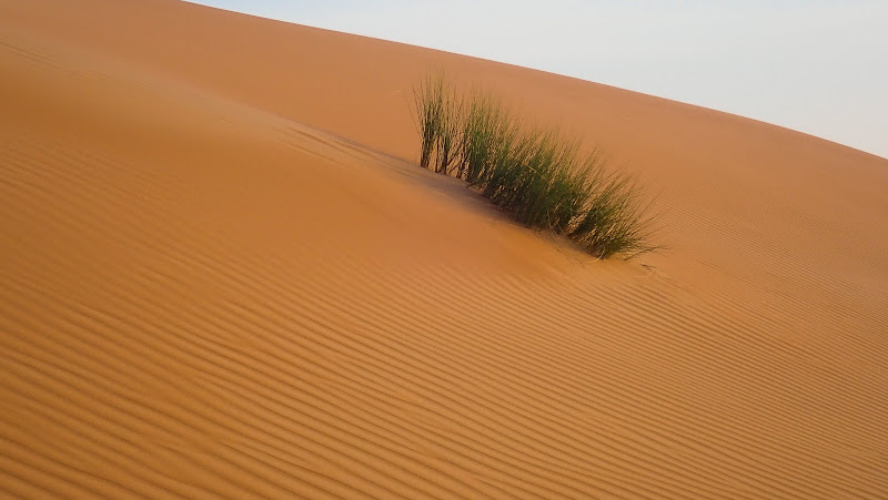 Nel deserto di laura62