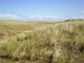 Photo: Norfolk Coast Path - From Brancaster to Warham - Gun Hill dunes