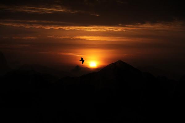 Wild sunset di leonardofoschi