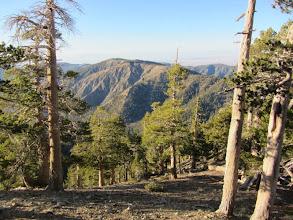Photo: View northeast from North Backbone Trail toward Blue Ridge