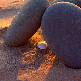 Rock and hard place by Nick Hogg - Artistic Objects Other Objects ( sand, macro, shell, beach, stone )