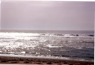 Photo: Near Half Moon Bay, CA - somewhere out there is me and a pod of bottlenose dolphins. Somewhere past that is a breeding ground for Great White sharks (only learned that afterwards !!)
