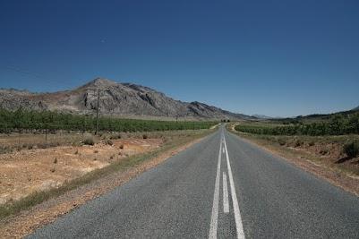Apfelplantage an der Straße nach Op-die-Berg