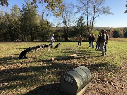 The Smith Method of Bird Dog Training with Rick Smith