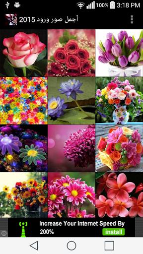 أجمل الورود 2015
