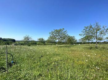 terrain à Coligny (01)