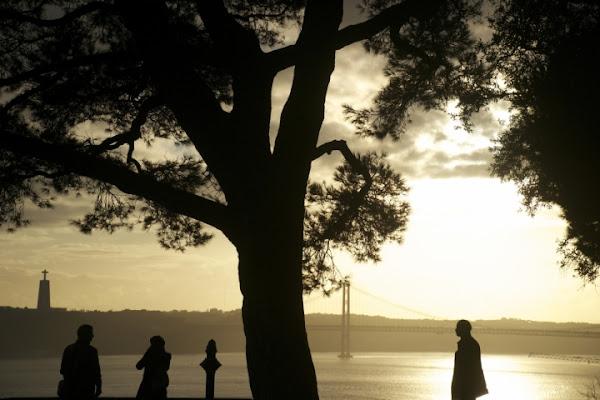 Sole a Lisbona di Darosh
