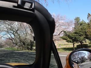 ロードスター NCEC のカスタム事例画像 みさお3号さんの2020年03月24日10:08の投稿