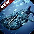 🐋 Whale wallpaper APK