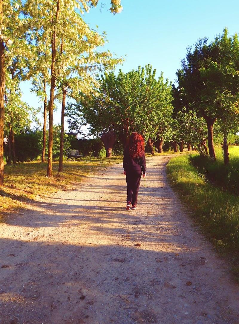 Walk di Angy_photo