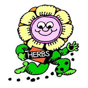 All About Herbs