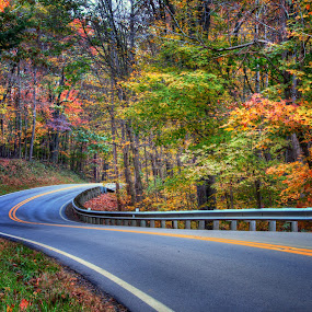 Homeward by Jim Crotty - Landscapes Travel ( calm, retreat, dayton ohio photographer, peaceful, ohio, jim crotty, autumn, inn at cedar falls, fall, hocking hills, beauty, landscape )