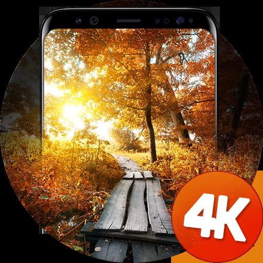 Autumn wallpapers 4k Icon