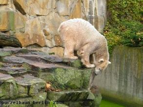 Photo: Gibt es etwas Spannendes im Wassergraben ?