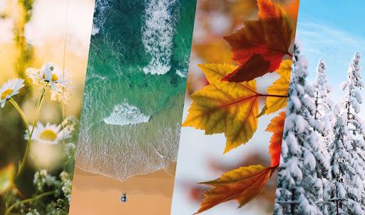 pressing-ecologique-nettoyage-saison-détachage