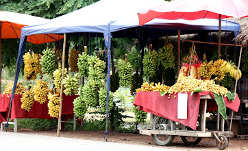 Photo: Day 328  -   Fruit Stall on the Roadside