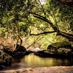 """""""A river seems a magic thing. A magic, moving, living part of the very earth itself."""" - Laura Gilpin by Manoj Swaminathan - Landscapes Waterscapes ( water, nature, rocks, river,  )"""