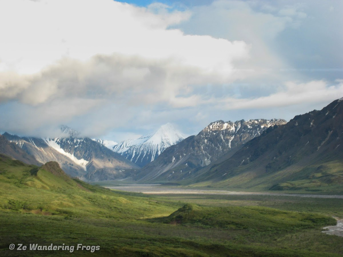 USA Alaska Itinerary 7 Days // Denali National Park Bus Ride