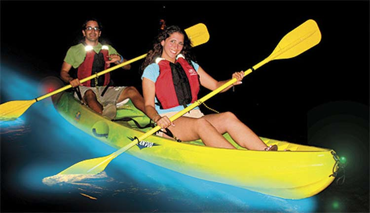 Kayakers glide through the Bioluminescent Bay on Puerto Rico's Vieques Island.