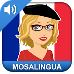 Learn French Free: Conversation, Vocabulary Course Icon