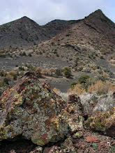 Photo: Strawberry Crater, Strawberry Crater Wilderness, Coconino National Forest, Arizona