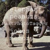 FastPhotoTagger