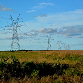 Power to the Horizon by Cal Johnson - Novices Only Landscapes ( field, powerlines, blue, texas, landscape )