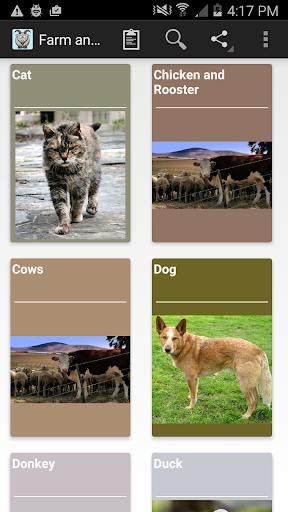 农场里的动物