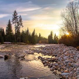 Hory a Slovakia by Ján Hrmo - Nature Up Close Water ( zapad slnka, jesen, les, slnko, potok, stromy )