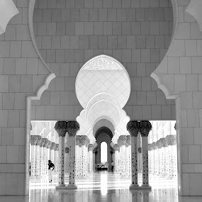Sheikh Zayed Mosque  by Manoj Kumar Kd - Buildings & Architecture Places of Worship