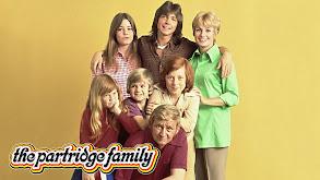 The Partridge Family thumbnail