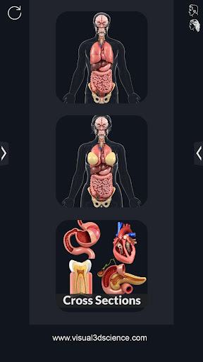 My Organs Anatomy screenshot for Android