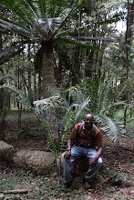 Photo: Dominic and Cycad - Encephalartos Tegulaneus