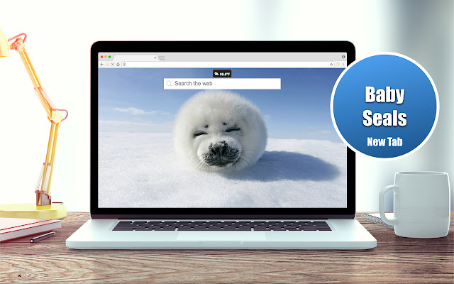 Baby Seals Wallpapers New Tab Theme