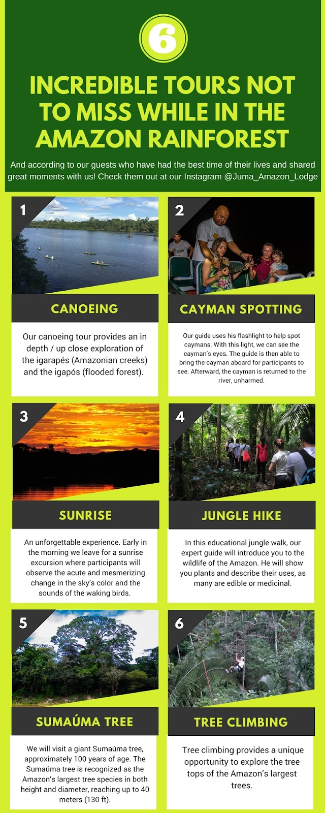 6 incredible tours not to miss while in the Amazon Rainforest