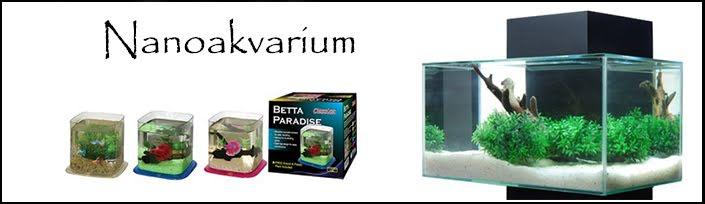 Nanoakvarium