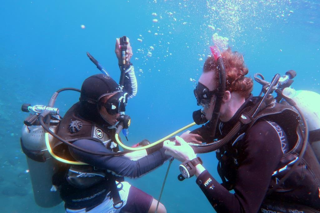 See Basic Scuba Diving Tips To Be A Pro In Underwater Diving