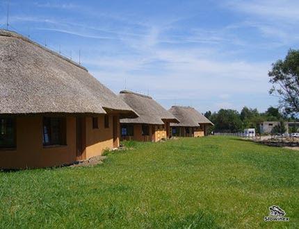 Szereg domków letniskowych z gliny krytych strzechą z dużym trawnikiem