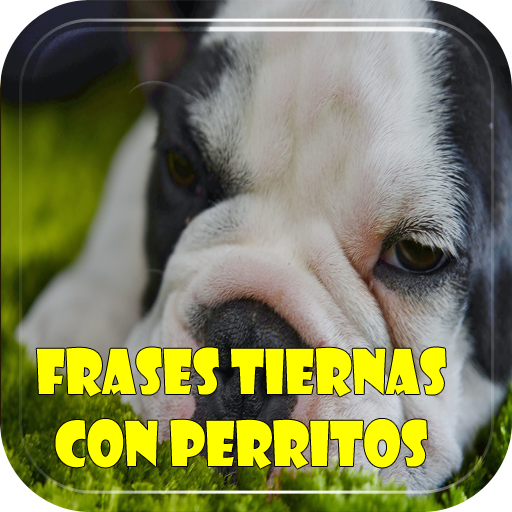Frases Tiernas Con Perritos Apps En Google Play