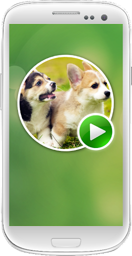 Dogs and Puppies Slide Puzzles