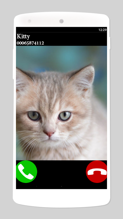 fake call cat 2- screenshot