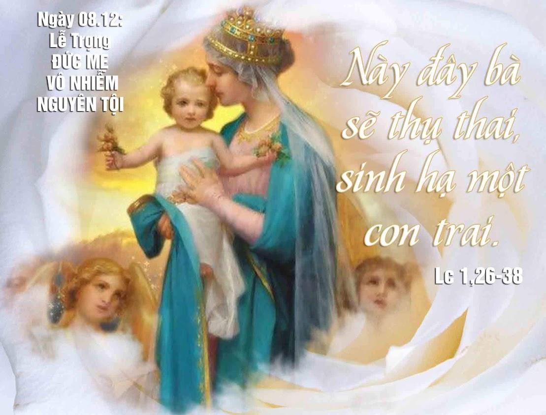 Nghe giảng lễ Đức Mẹ Vô Nhiễm (2011-2014)