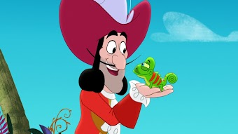 Captain Hook's Hooks/Mr. Smee's Pet