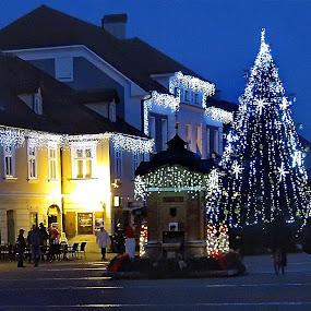 by Andjela Miljan - Public Holidays Christmas (  )