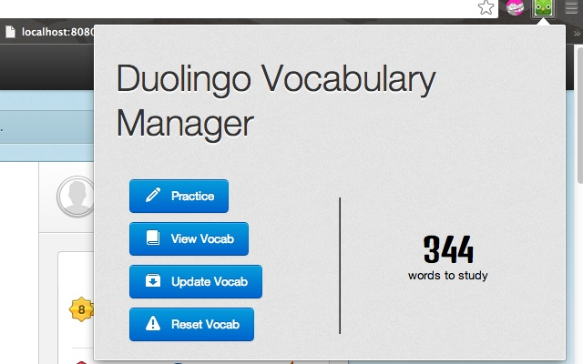 Duolingo Vocabulary Manager