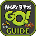 Guide for Angry Brids Go! icon