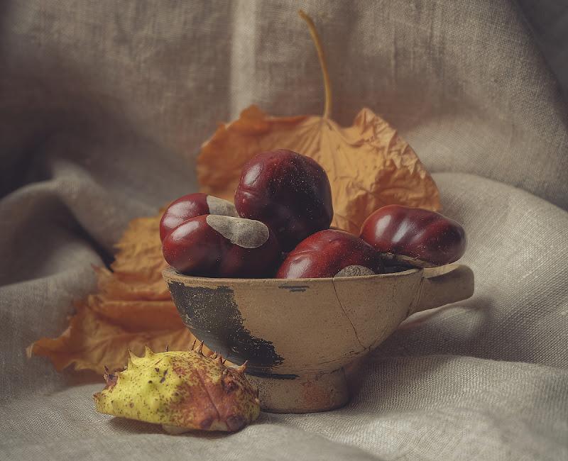 Haiku d'autunno di Erato