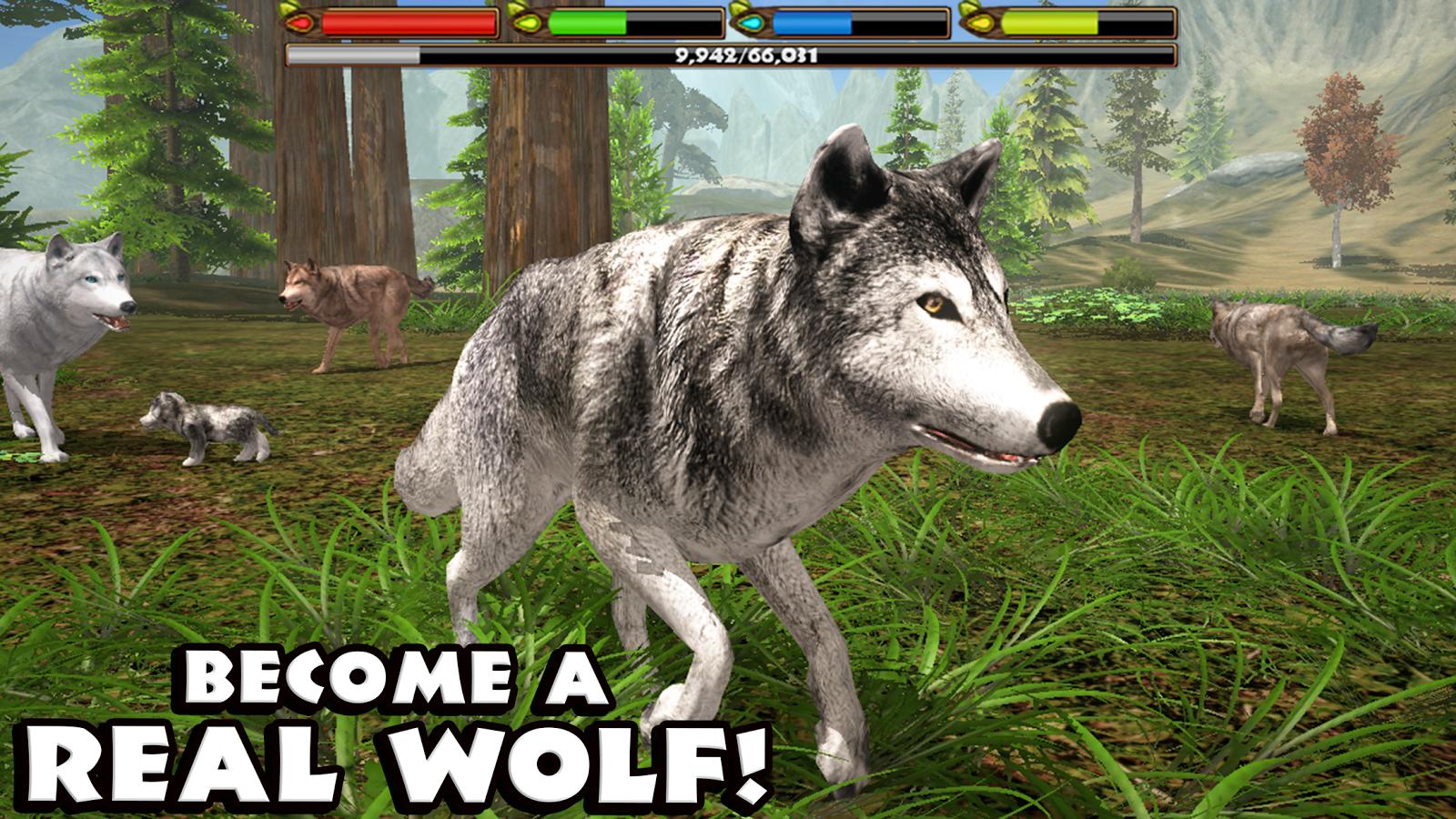 Wolf Online Spiele